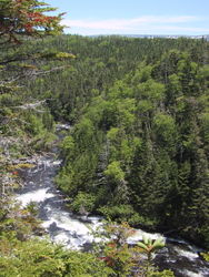 Bakers_Brook_Hike_Rocky_Harbour_NF